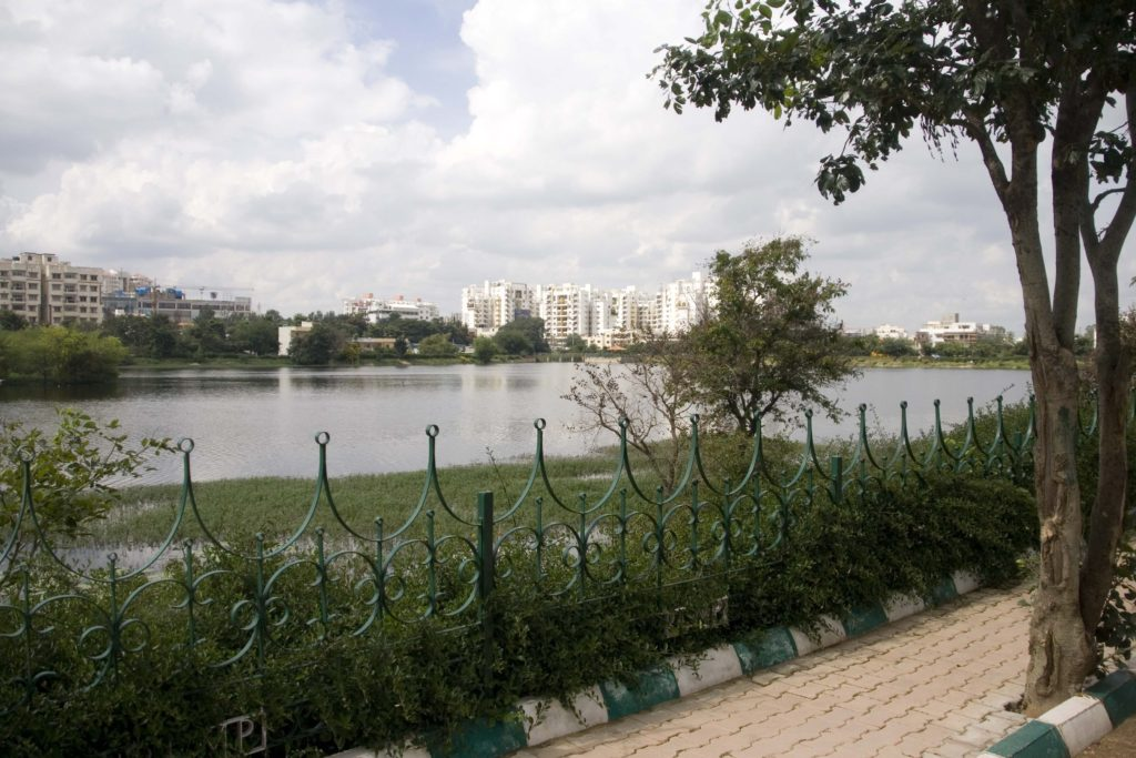 A view from the walking path of apartment buildings across the Kaikondrahalli Lake. Developers sometimes dump waste directly into the lake, even as they advertise the lake view to sell new apartments. Copyright: Johan Enqvist.
