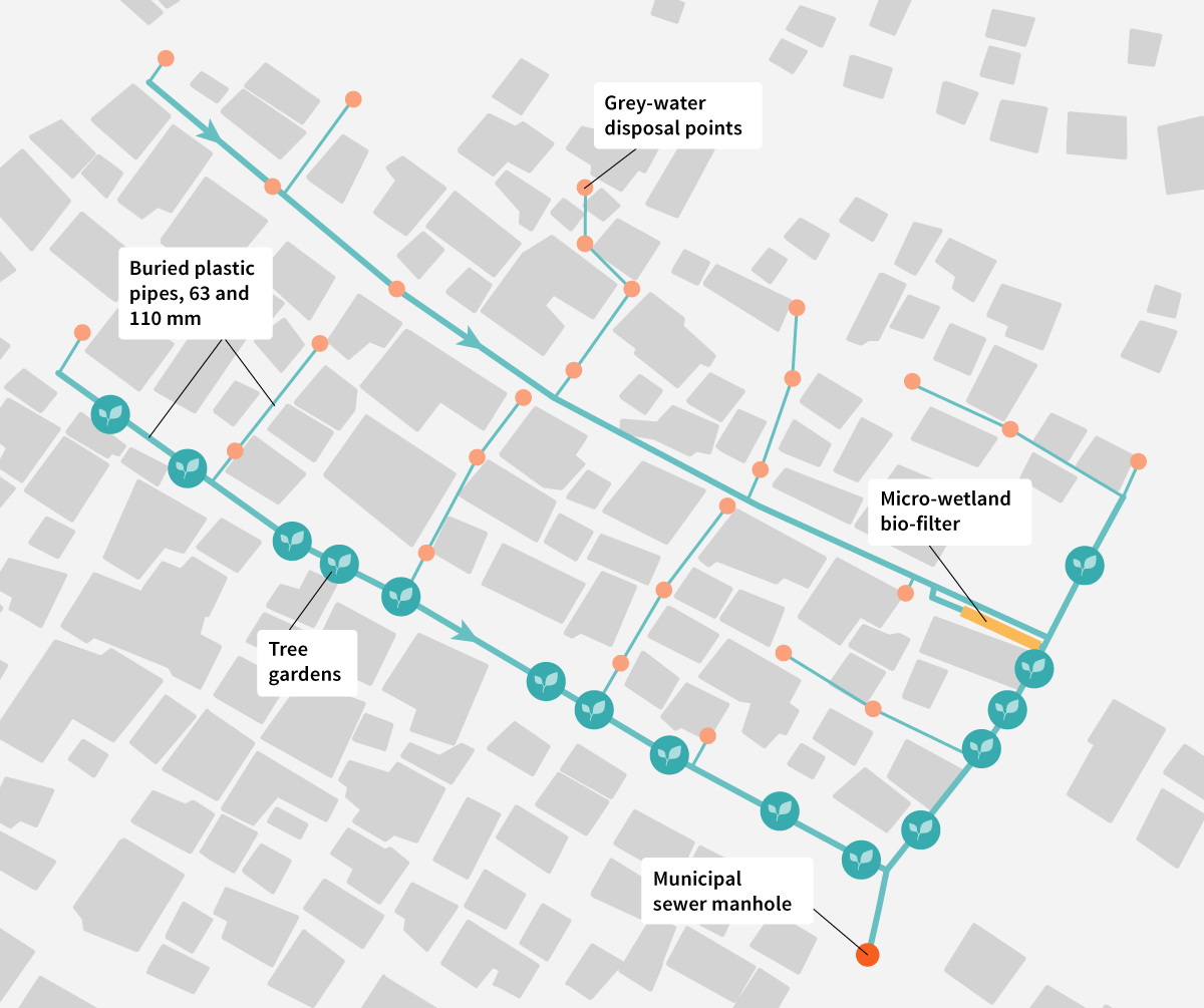 Conceptual drawing of the network of buried plastic pipes linking grey-water inputs to tree gardens in Langrug, with the microwetland for further treatment. The informal settlement also has water mains to deliver water to some houses and a separate sewage line, not shown here. Illustration: Elsa Wikander/Azote.