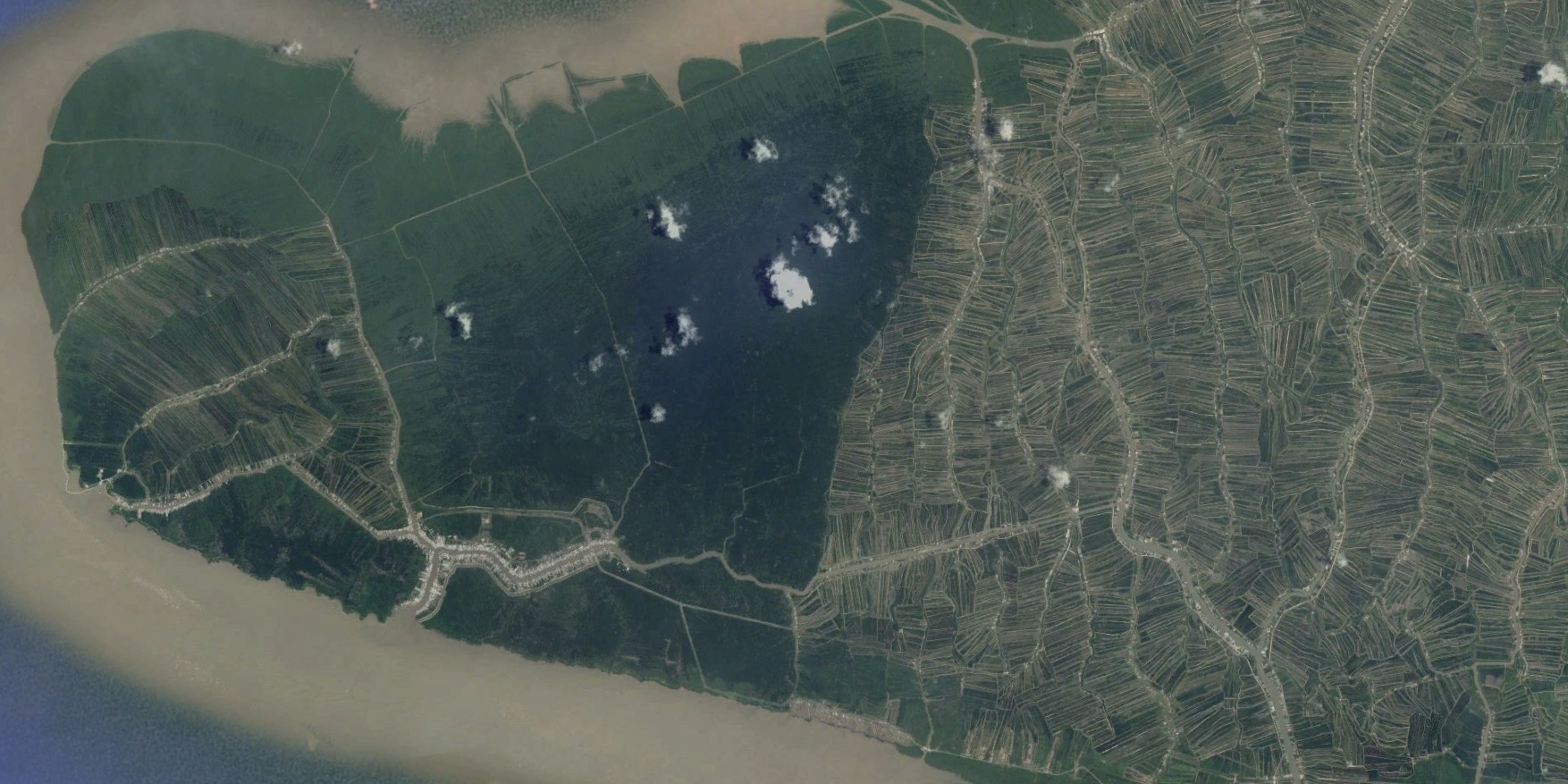 National park abuts plots used for mangrove-shrimp farming areas. Copyright: CNES/Astrium, TerraMetrics, via Google Earth.