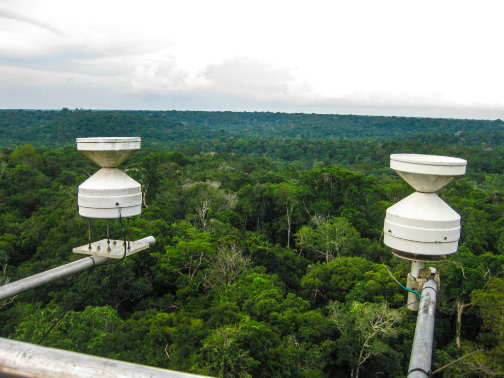 Above the rainforest, sensors perched atop a 55-m tall observation tower track air temperature, humidity, and more. Copyright: Wendy Broadgate.