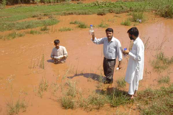 Water sampling near Islamabad. Photo courtesy of: Ingrid Verstraeten, USGS