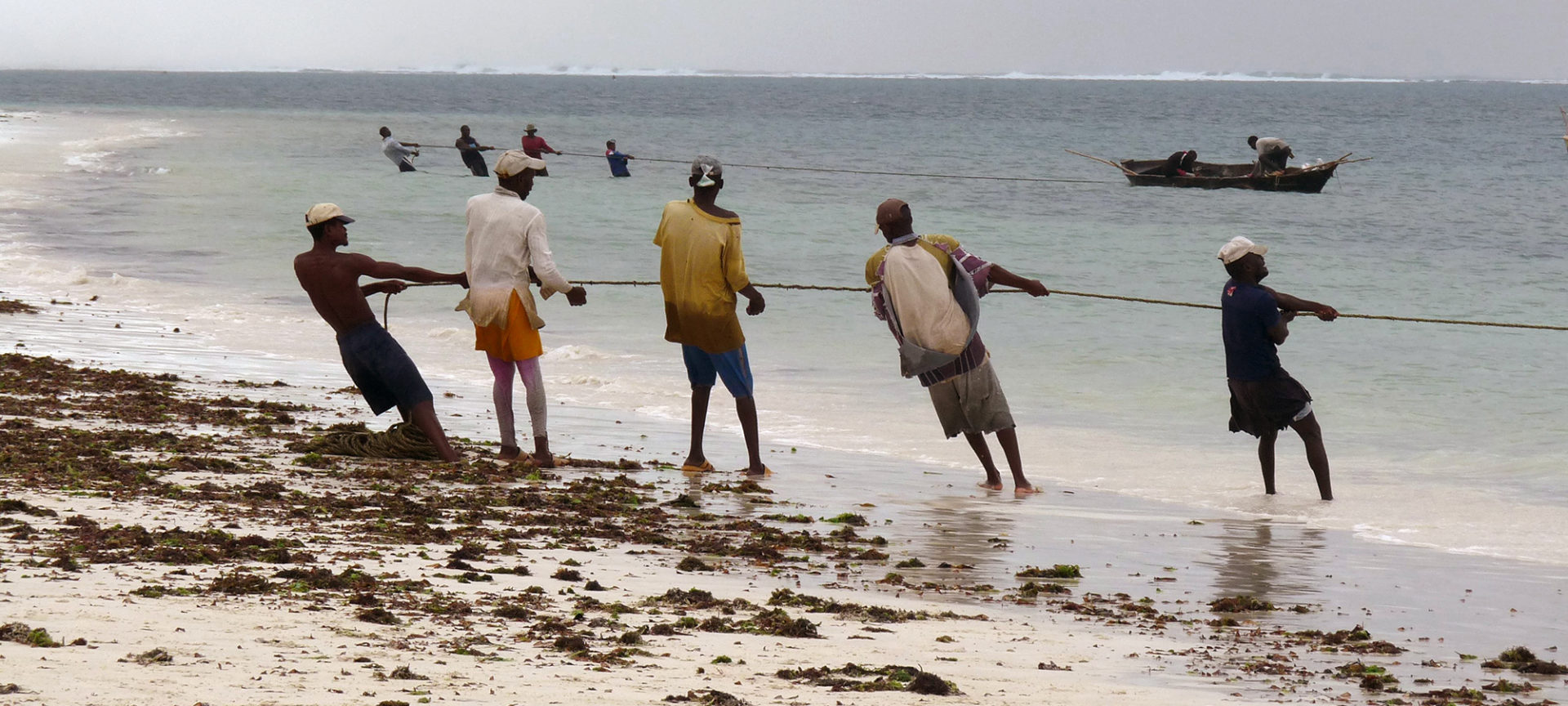 Seining for fish from the beach in Mombasa. Photo: Tim Daw/SRC.