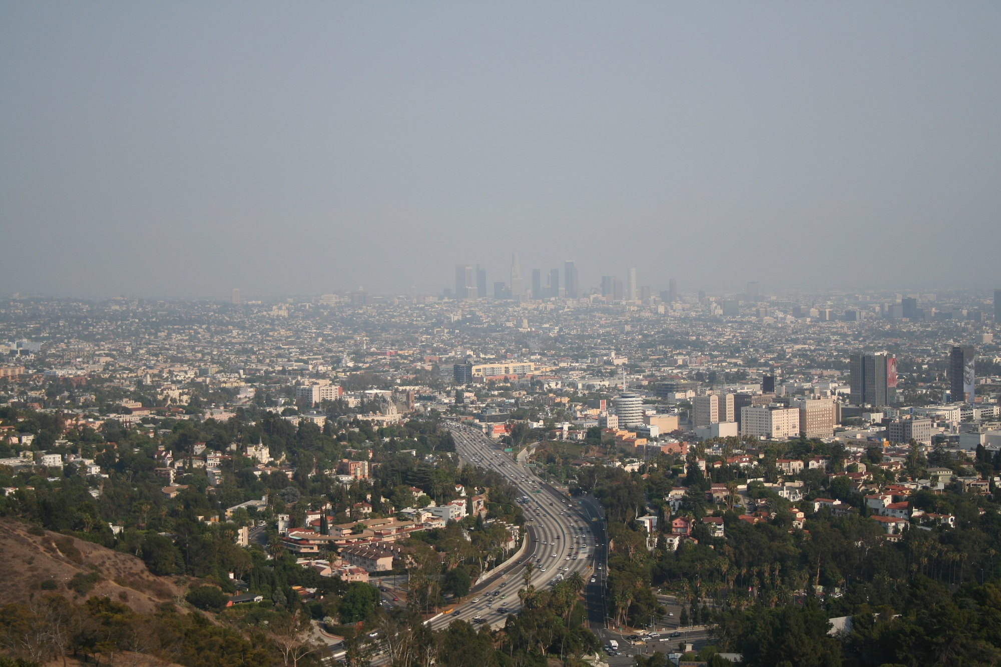 Los Angeles in smog, 5 August 2007. Photo: Massimo Catarinella, https://commons.wikimedia.org/wiki/File:LosAngelesSmog.jpg