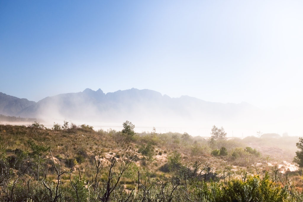 Dust from the dried up south side of the Theewaterskloof Dam, near Grabouw. It is one of Cape Town's main water capture dams. August 2017. Photo copyright: G. Meyer