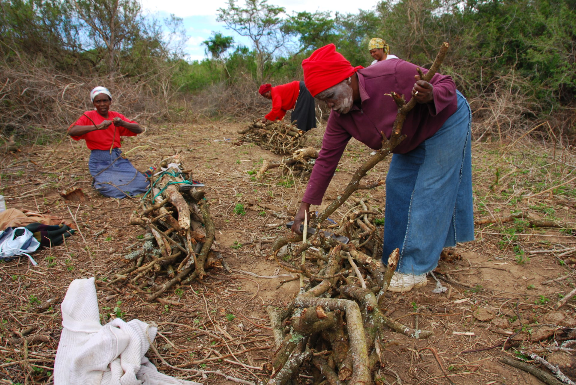 Women collecting fuelwood for domestic use. Such activities provide opportunities for women to get away from the trouble and difficulties experienced at home and to be in the company of friends for a short time. Photo copyright: Tony Dold