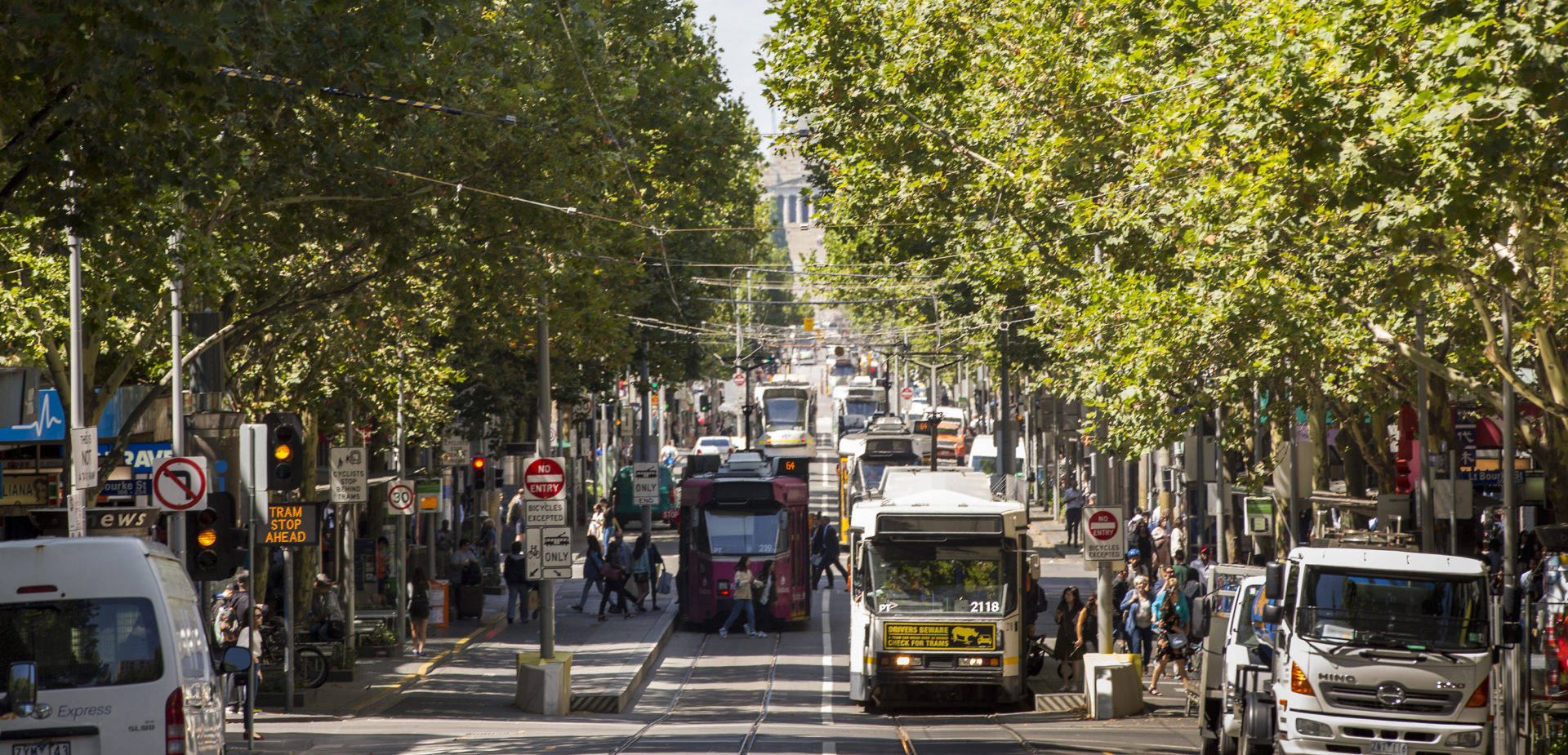 Forested street in Melbourne. Photo copyright: K. Hertzog