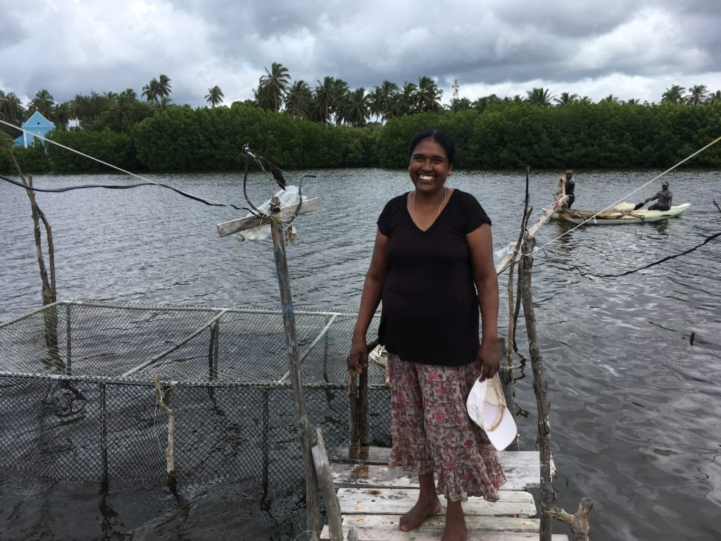 Niranjala Fernando is a member of one of the CBOs. She runs a cage fishing business supported by funding through the CBO. Photo: S. Verkaart
