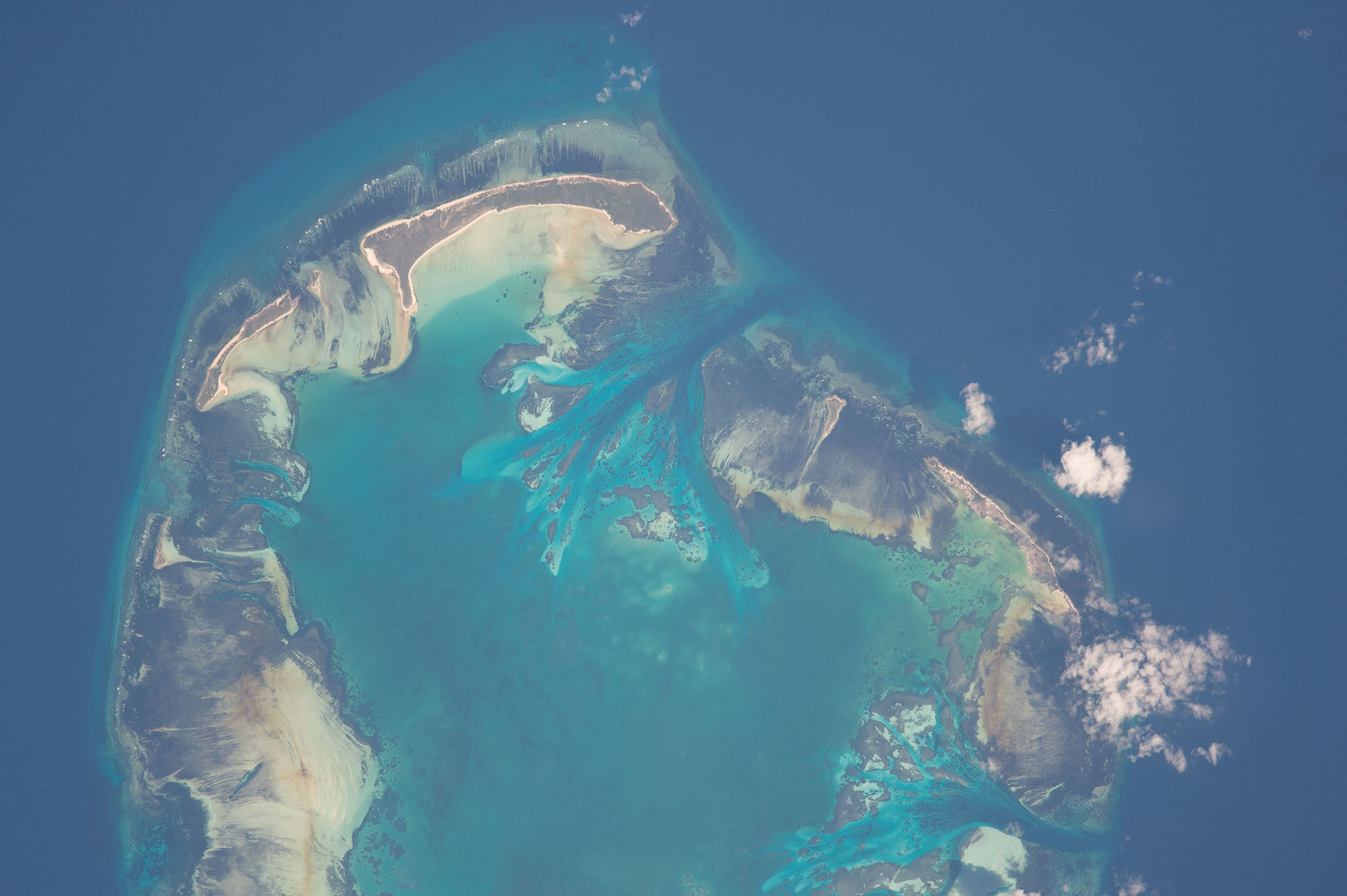 Aldabra atoll in the Seychelles, photographed from space by an astronaut on the International Space Station, is a UNESCO site and home to rare Indian Ocean dugongs and sea tortoises. Courtesy of NASA (https://eol.jsc.nasa.gov/SearchPhotos/photo.pl?mission=ISS050&roll=E&frame=29472)
