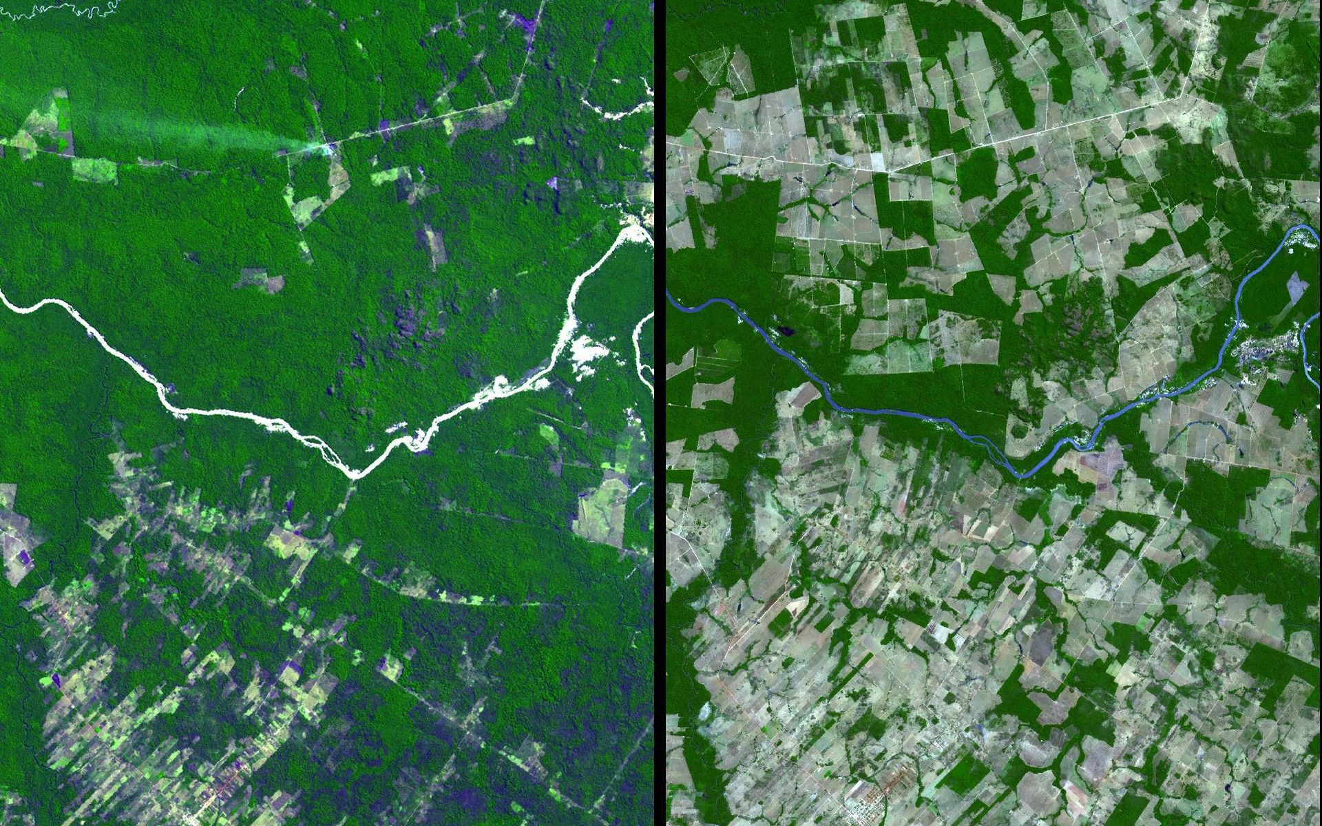 From 1998 to 2006, the Mato Grosso region of Brazil lost on average 19,000 square kilometres of rainforest a year. The region is known for soybean production. https://www.jpl.nasa.gov/spaceimages/details.php?id=PIA11420