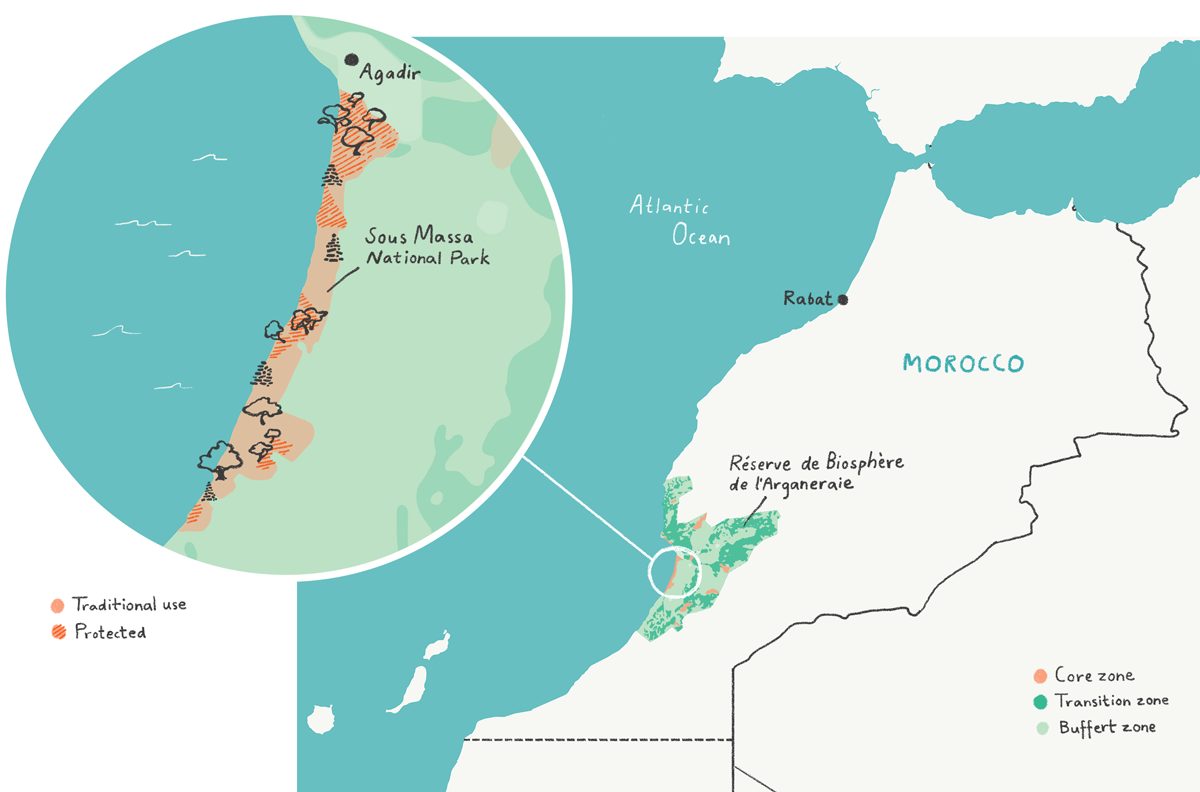 "A map of Morocco showing the Unesco site and its zoning. The close-up of Souss Massa national park shows how the ""core zones"" there is divided into areas where traditional use is allowed and areas that are protected from use (in red hashes). Illustration: E. Wikander/Azote"